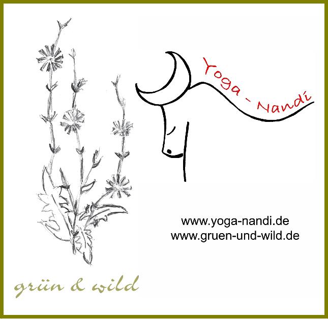 Logo-Kraut&Yoga