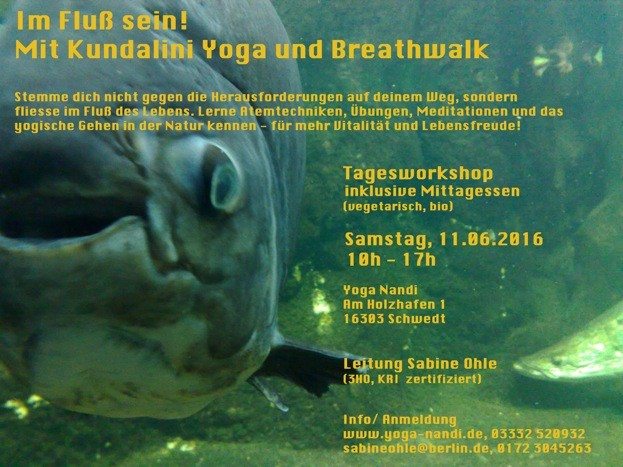 Im Fluß sein!- Schwedt- Tagesworkshop